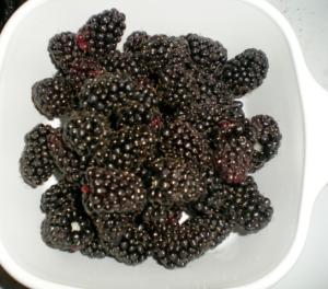 Marionberries!