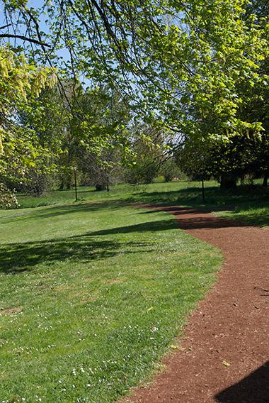 Back into park