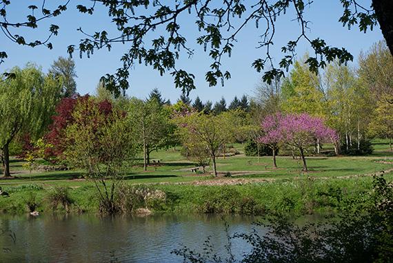 Cuthbert garden