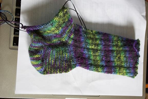 Sock 039