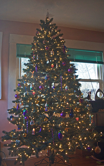 purple tree 2013